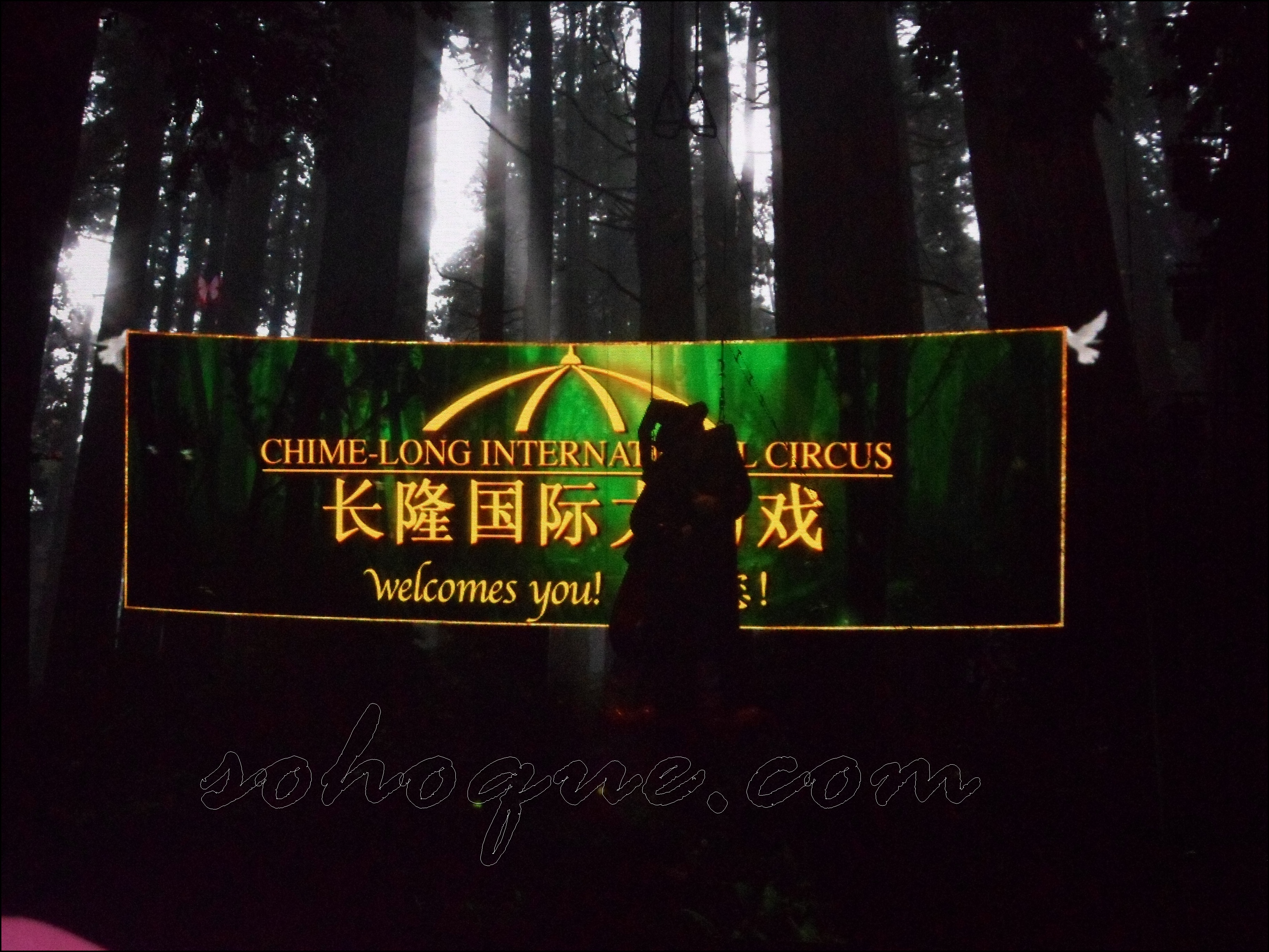 welcome clear Chimelong International Circus, Guangzhou Best!!!