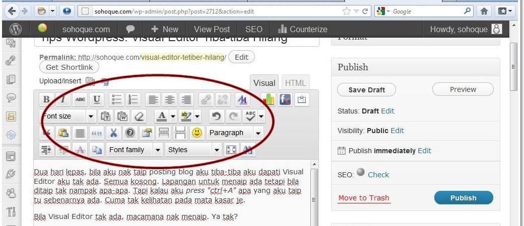 visual editorr Tips Wordpress: Visual Editor Tiba tiba Hilang