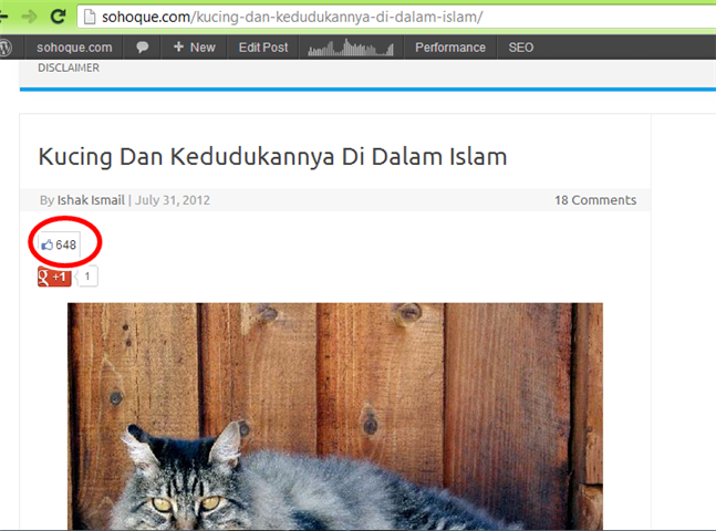 like entri kucing di facebook