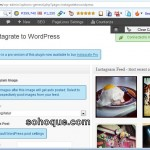 setting instagrate to wordpress